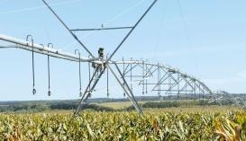 Наявність зрошення значно зменшить ризик недобору врожаю від посухи