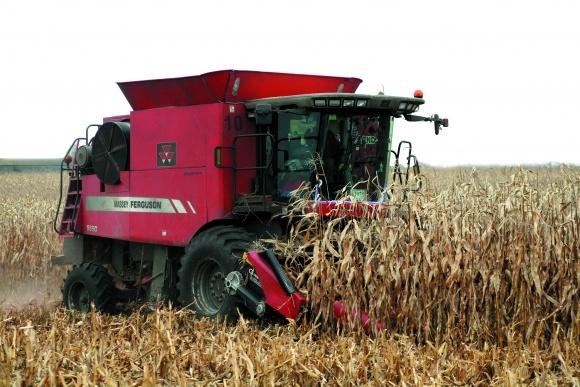 Технології та техніка збирання і збереження зерна кукурудзи фото, ілюстрація
