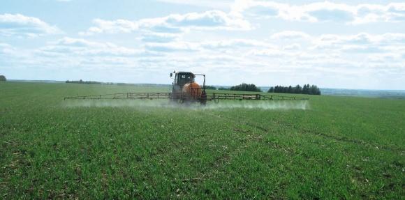 Як домогтися максимальної ефективності засобів захисту рослин (ЗЗР)? фото, ілюстрація