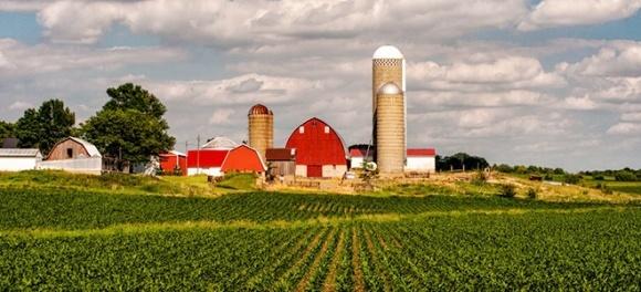 Як господарюється фермерам в Айові фото, ілюстрація