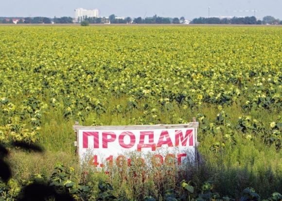 ЄСПЛ заявляє, що  заборона на продаж землі в Україні порушує права власників  фото, ілюстрація