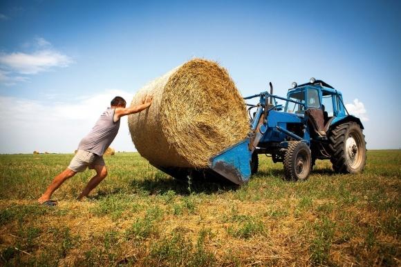 70% агропідприємств України – фермерства фото, ілюстрація