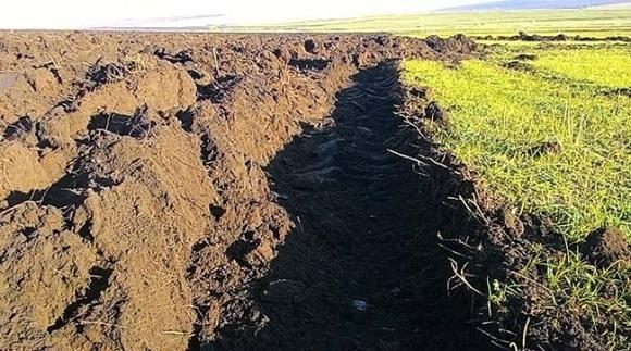 Фермери на Одещині відвойовують землі Тарутинського полігону  фото, ілюстрація