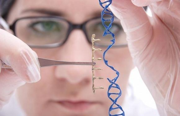 Британські вчені просунулися найдальше в справі розшифрування геному пшениці фото, ілюстрація