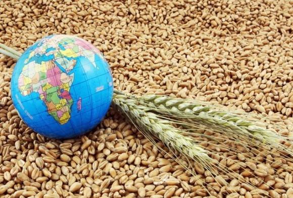 Світові ціни на продовольчі товари залишаться низькими, - FAO фото, ілюстрація