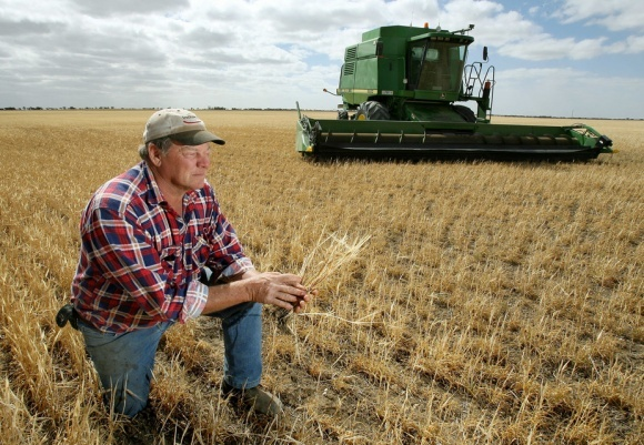 АФЗУ очікує подвоєння кількості фермерських господарств у 2018 році фото, ілюстрація