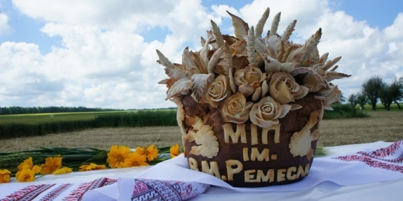 Українські селекціонери зацікавлені у співпраці з Угорщиною фото, ілюстрація