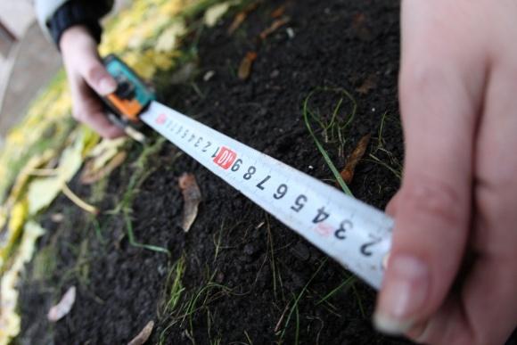 Нова модель земреформи створить пільгові умови фермерам при покупці землі фото, ілюстрація