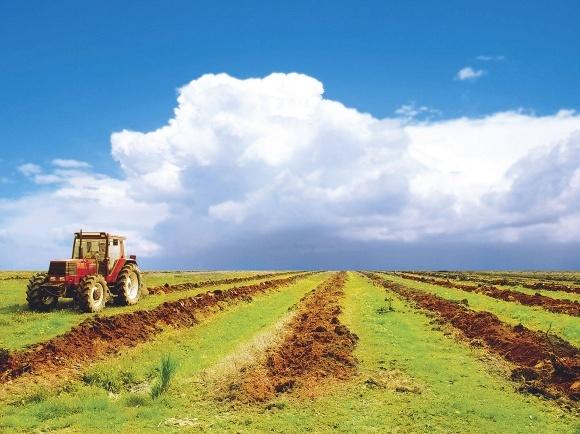 ВРУ може восени розглянути запуск ринку землі в Україні фото, ілюстрація