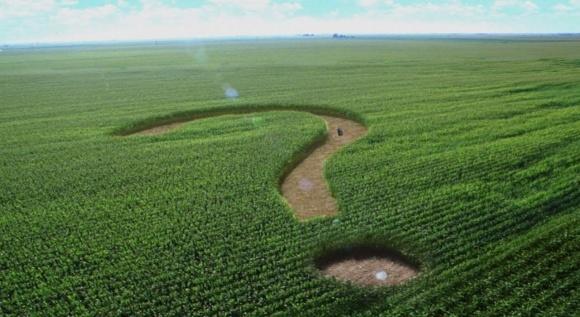 Мінагрополітики прокоментувало рішення ЄСПЛ щодо мораторію на продаж землі фото, ілюстрація