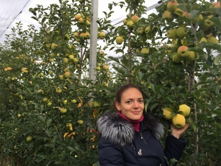 Органический сад Валентины Лановенко